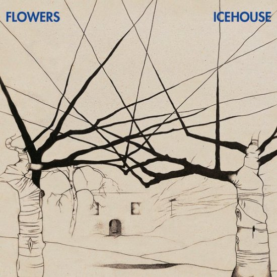 20/06/2011 : ICEHOUSE - Flowers
