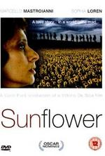 NEWS Italian Screen Goddess Sophia Lorenin the newly HD Re-mastered Sunflower
