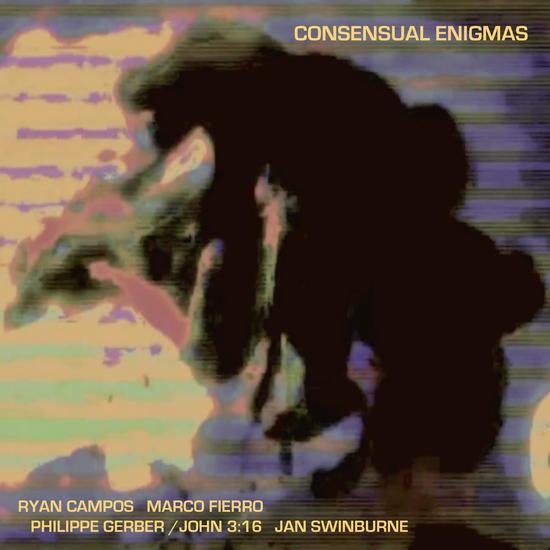 07/08/2015 : JAN SWINBURNE - Consensual Enigmas