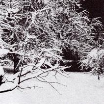 28/11/2011 : M. B. - Hibernum