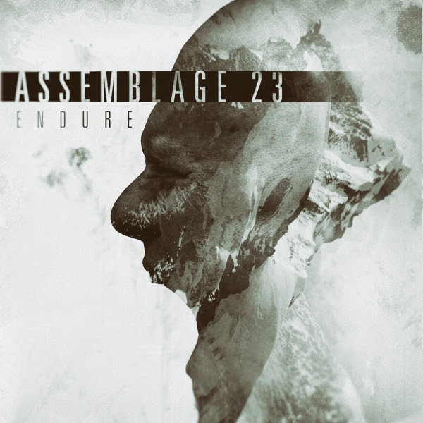 NEWS New album by Assemblage 23 out