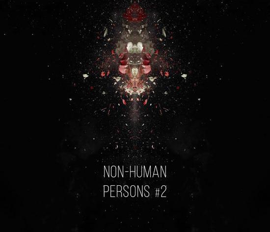 10/12/2014 : NON-HUMAN PERSONS - Original Fascination #2