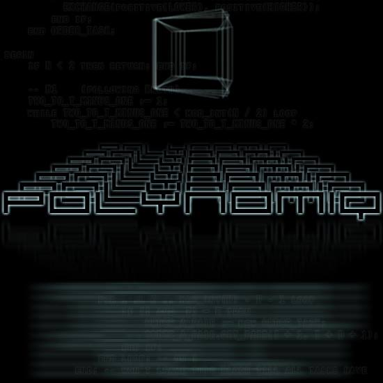 04/10/2013 : POLYNOMIQ - Languages (exclusive preview)