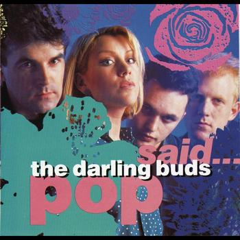28/10/2013 : THE DARLING BUDS - Pop Said