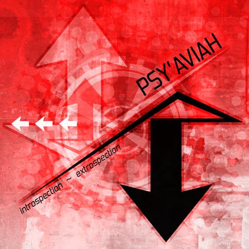 29/12/2011 : PSY'AVIAH - Introspection/Extrospection