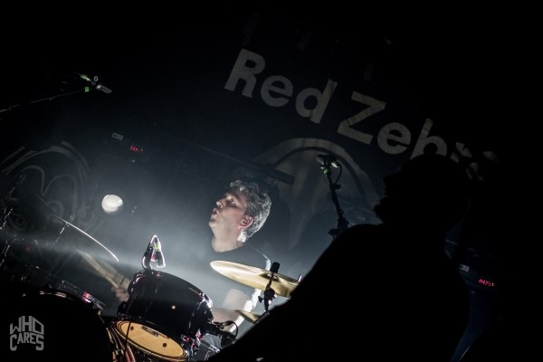 RED ZEBRA - De Lux Herenthout