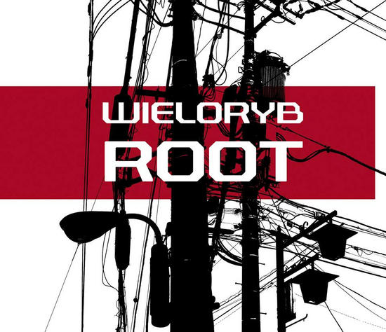 14/07/2014 : WIELORYB - Root
