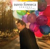 15/01/2013 : DAVID FONSECA - Seasons: falling