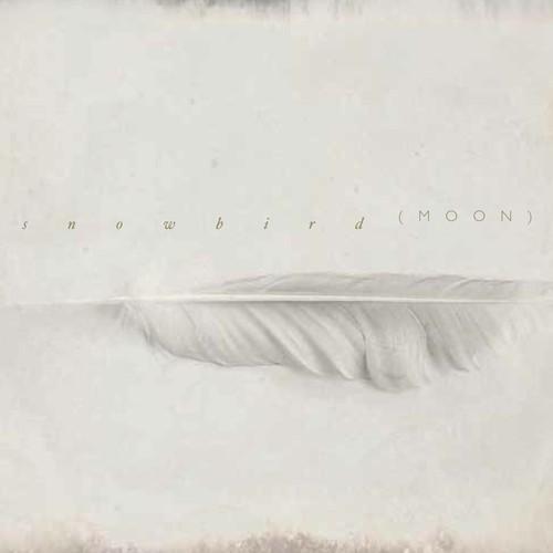 17/03/2014 : SNOWBIRD - Moon / Luna