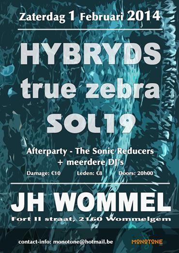 03/02/2014 : SOL 19 , TRUE ZEBRA , HYBRYDS - Antwerpen, JH Wommel (1/02/2014)