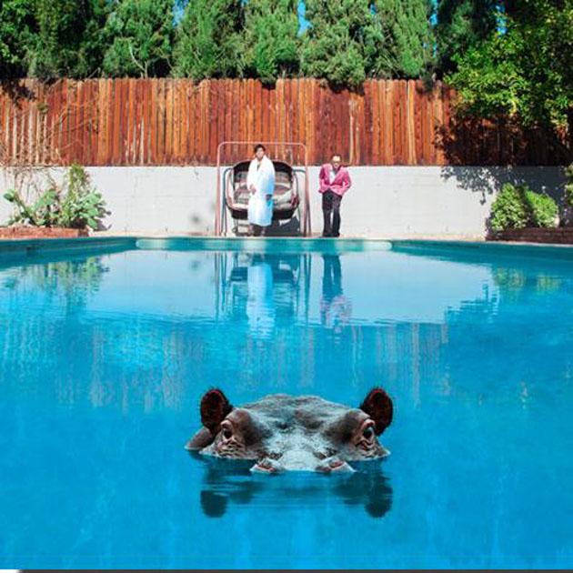 18/09/2017 : SPARKS - Hippopotamus