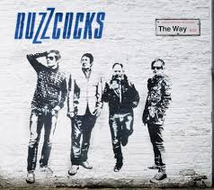 09/10/2014 : THE BUZZCOCKS - It's not you