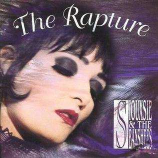 NEWS The Divine Rapture | Celebrating The Siouxsie and the Banshees 1995 Release