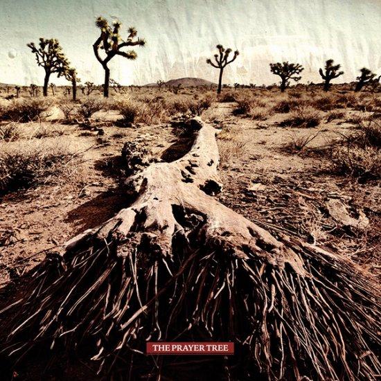 08/08/2011 : THE PRAYER TREE - The Prayer Tree