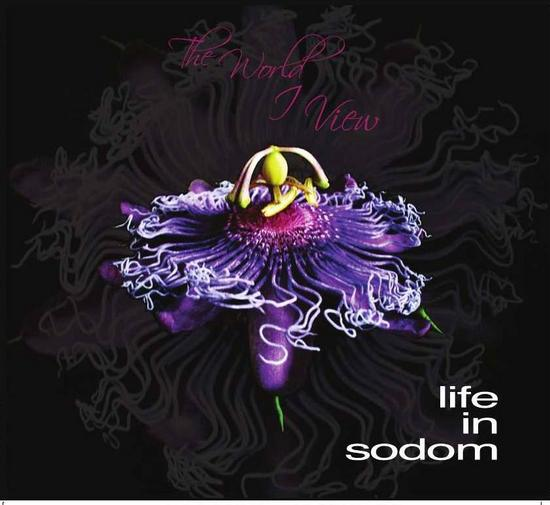 20/01/2014 : LIFE IN SODOM - The World I View