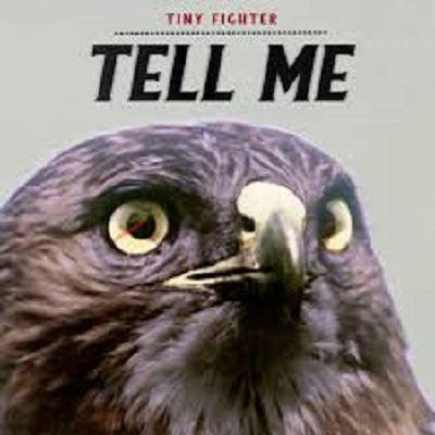 22/03/2019 : TINY FIGHTER - Tell Me