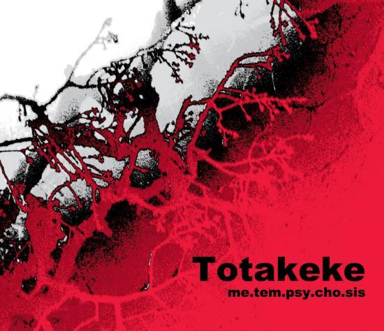 16/11/2014 : TOTAKEKE - Me.Tem.Psy.Cho.Sis