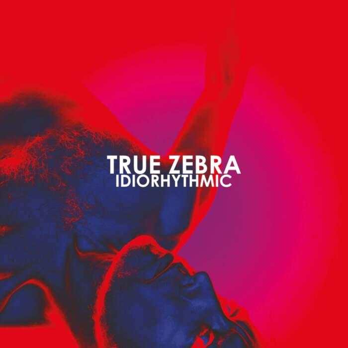 26/09/2020 : TRUE ZEBRA - Idiorhythmic