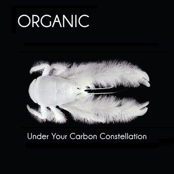 25/11/2012 : ORGANIC - Under Your Carbon Constellation