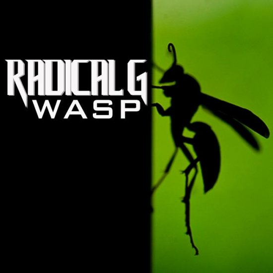 24/04/2013 : RADICAL G - Wasp EP