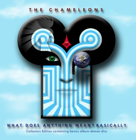 02/06/2011 : THE CHAMELEONS - What does anything mean? Basically