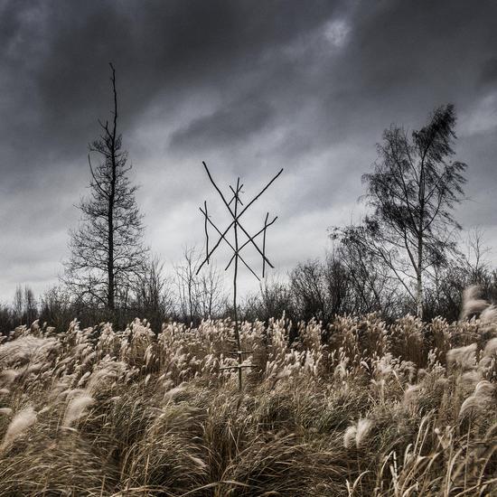 12/05/2015 : WIEGEDOOD - De Doden Hebben het Goed
