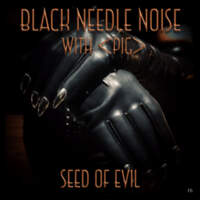 CD BLACK NEEDLE NOISE Seed of Evil