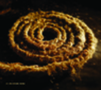 CD COIL Nine Inch Nails 'Recoiled'