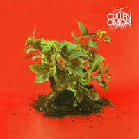 CD CULLEN OMORI New Misery