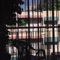 CD SECTION 25 Dark Light