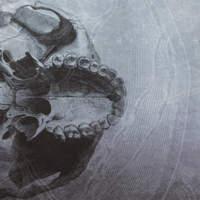 CD CRANIAL Dead Ends