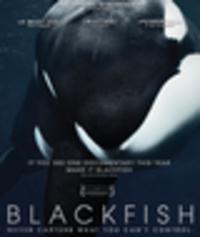 CD GABRIELA COWPERTHWAITE Blackfish