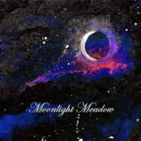 CD MOONLIGHT MEADOW Moonlight Meadow