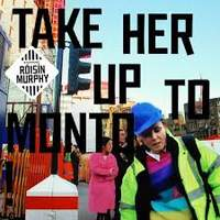 CD ROISIN MURPHY Take Her Up To Monto