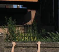 CD SEESAYLE Stamina