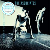 CD THE ASSOCIATES The Affectionate Punch