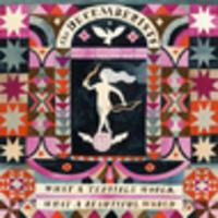 CD THE DECEMBERISTS What a Beautiful World, What a Terrible World