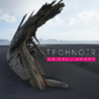 CD TECHNOIR We fall apart