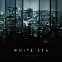 CD WHITE SEA Tropical Odds